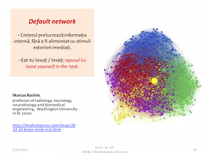 Default network