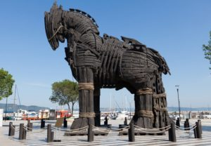 calul troian al sinelui si invatare din experienta